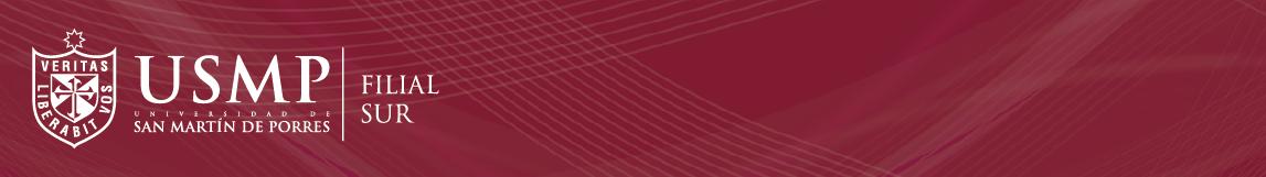 USMP Filial Sur